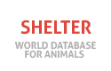 Shelter for animals