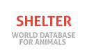 Shelter for animals